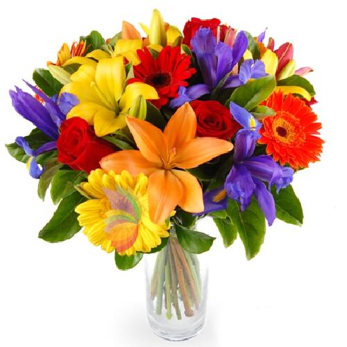 Mazzo Di Fiori Colorati.Sale And Delivery Flowers Plants Cake And Original Gifts At Home